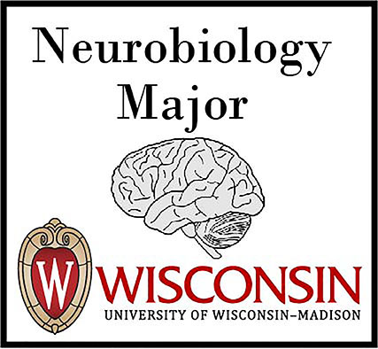 Neurobiology Major logo